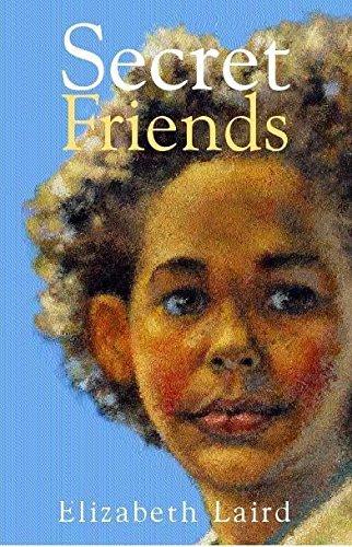 9780340752845: Secret Friends (Hodder story book)