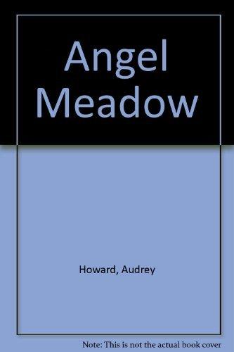 9780340798867: Sainsburys Angel Meadow
