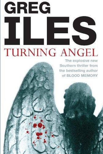 9780340833704: Turning Angel