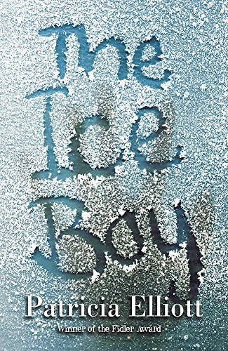 9780340854242: The Ice Boy