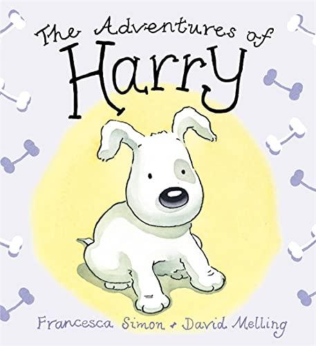 9780340878545: Adventures of Harry