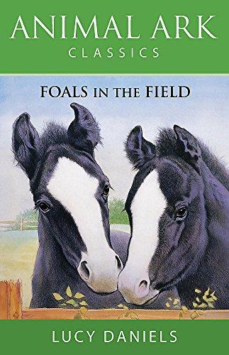9780340881637: Foals in the Field (Animal Ark Classics #28)