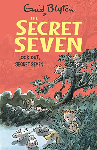 The Secret Seven Ebook