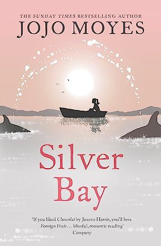 9780340895931: Silver Bay