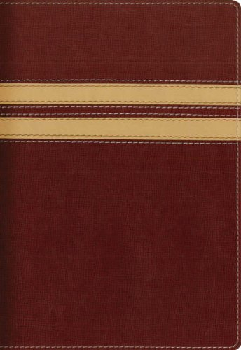 9780340908686: NIV Compact Thinline Bible