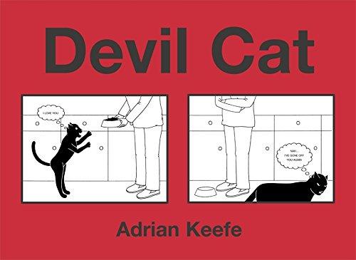 9780340908761: Devil Cat