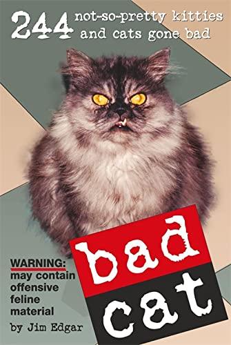 9780340908778: Bad Cat