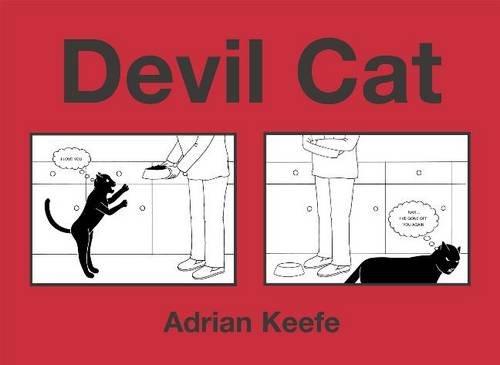 9780340910283: Devil Cat