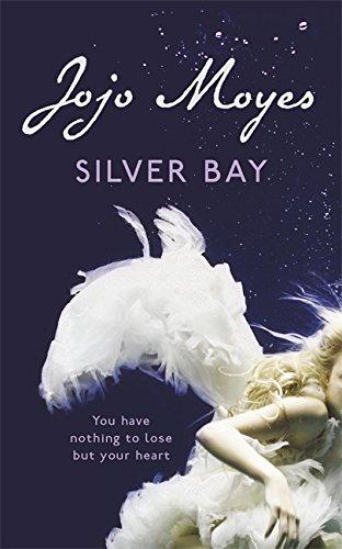 9780340936733: Silver Bay