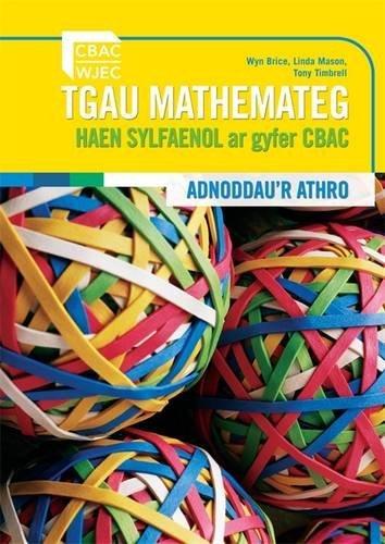 9780340974988: WJEC Foundation Mathematics Teacher's Guide (Welsh Language)