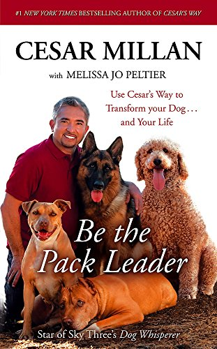 9780340976289: BE THE PACK LEADER: USE CESAR'S WAY TO TRANSFORM YOUR DOG ... AND YOUR LIFE