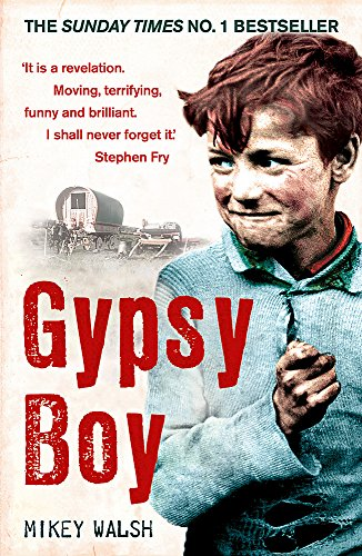 9780340977989: Gypsy BoyOne Boy's Struggle to Escape from a Secret World