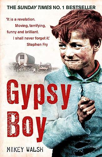 9780340977989: Gypsy Boy