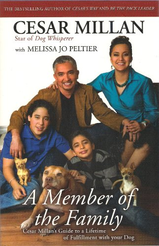 9780340978559: A Member of the Family