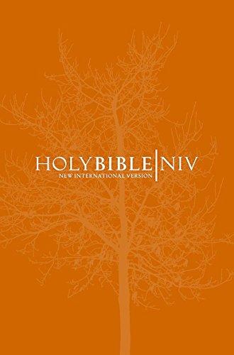 9780340979587: NIV Popular Burgundy Hardback Bible (Bible Niv)