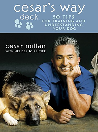 9780340992630: Cesar's Way Deck: 50 Tips for Training and Understanding Your Dog