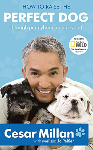 9780340993057: How to Raise the Perfect Dog: Through puppyhood and beyond