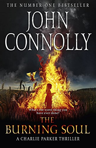 9780340993538: The Burning Soul: A Thriller