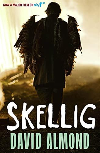 9780340997048: Skellig: TV Tie-In