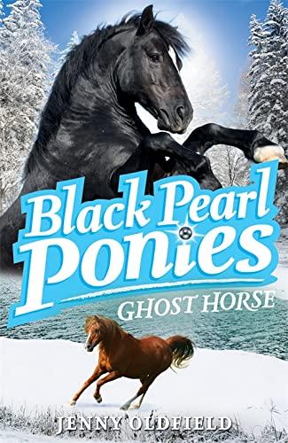 9780340998977: Ghost Horse (Black Pearl Ponies)