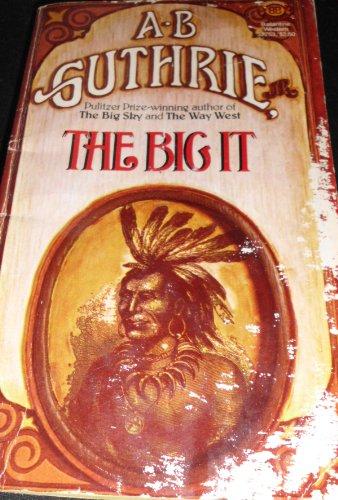 9780345327536: The Big It