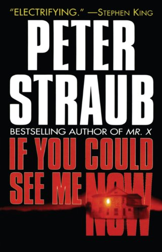 If You Could See Me Now: Straub, Peter