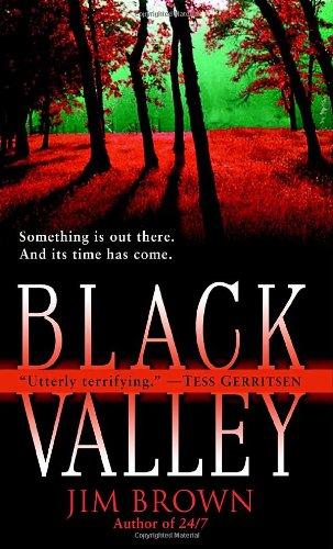 9780345447005: Black Valley