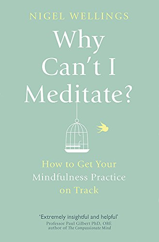 9780349405759: Why Can't I Meditate?: How to Get Your Mindfulness Practice on Track