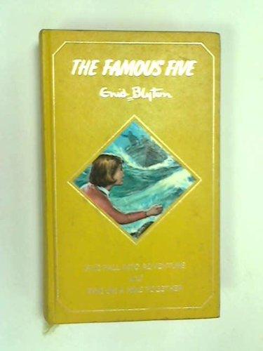 Famous Five Annual: Five Have a Wonderful: Enid Blyton