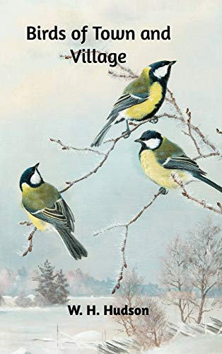 9780368428364: Birds of Town and Village