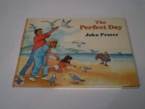 9780370307428: The Perfect Day
