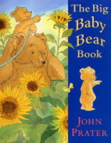 9780370325149: The Big Baby Bear Book