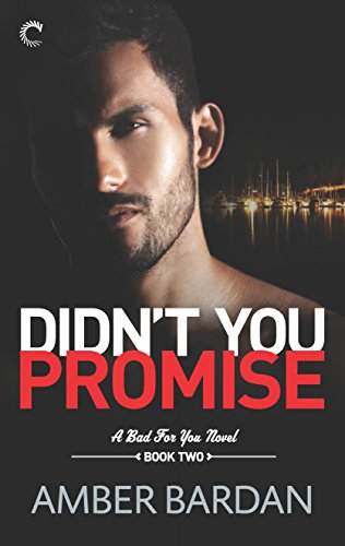9780373003976: Didn't You Promise: A Bad Boy Billionaire Romance (A Bad for You Novel)