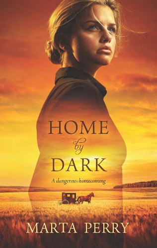 9780373777358: Home by Dark (Hqn)