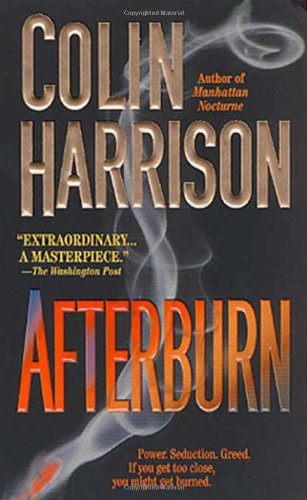 9780374102050: Afterburn: A Novel