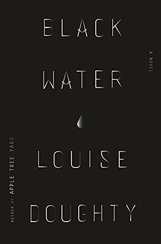9780374114015: Black Water: A Novel