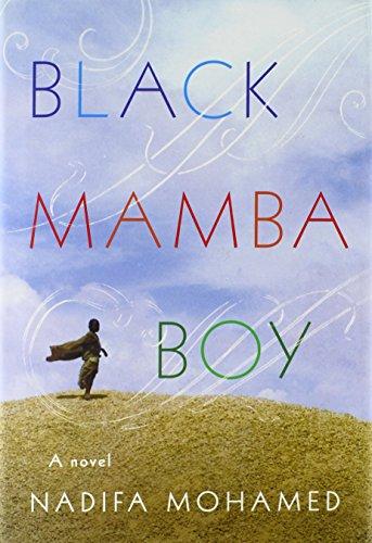 9780374114190: Black Mamba Boy