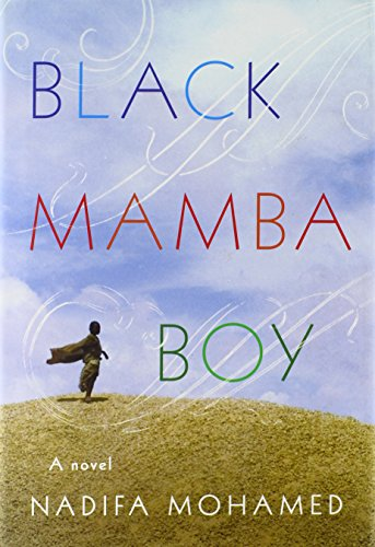 9780374114190: Black Mamba Boy: A Novel