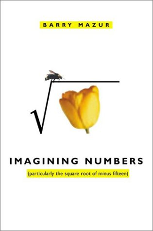 9780374174699: Imagining Numbers: (particularly the square root of minus fifteen)