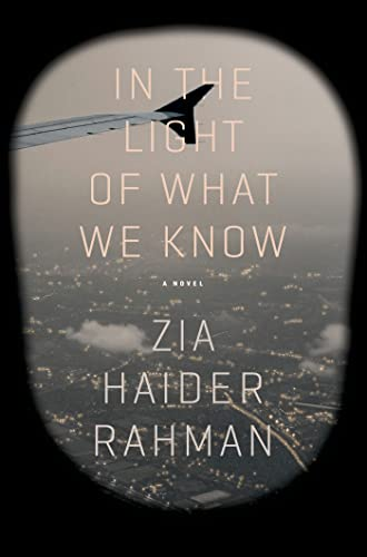 9780374175627: In the Light of What We Know: A Novel