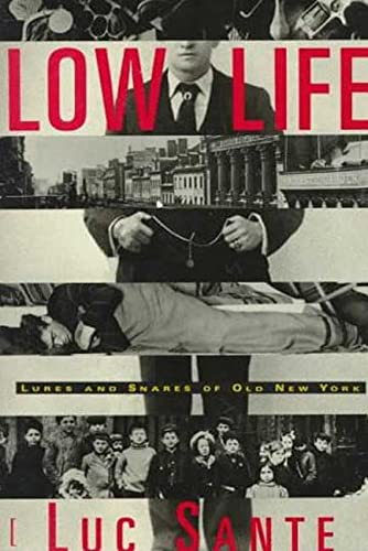 9780374194147: Low Life: Lures and Snares of Old New York