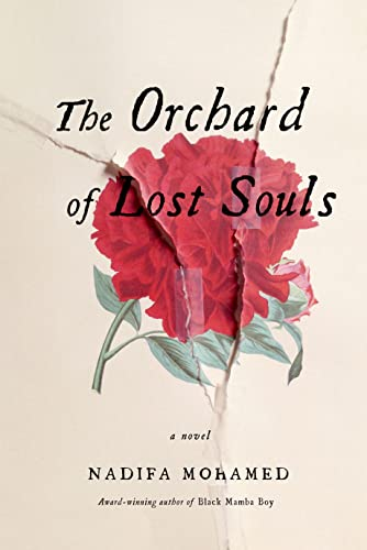9780374209148: The Orchard of Lost Souls: A Novel