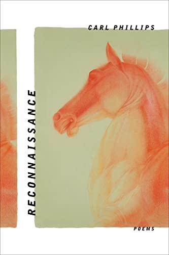 9780374248284: Reconnaissance: Poems