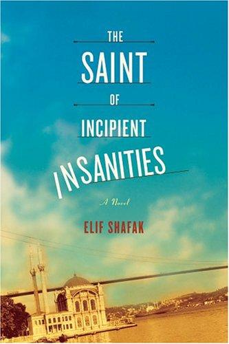 9780374253578: The Saint of Incipient Insanities: A Novel