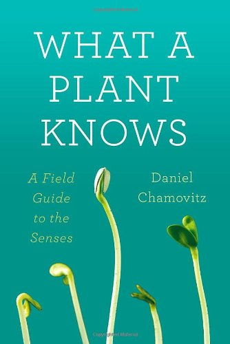 9780374288730: What a Plant Knows: A Field Guide to the Senses