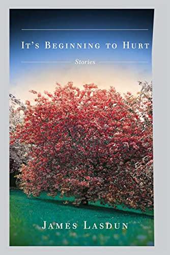 9780374299026: It's Beginning to Hurt: Stories