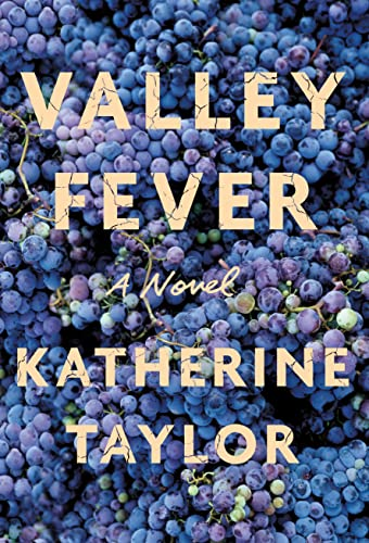 9780374299149: Valley Fever: A Novel