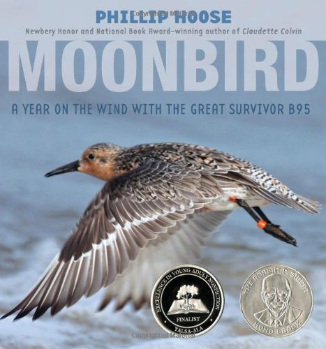 9780374304683: Moonbird: A Year on the Wind with the Great Survivor B95 (Robert F. Sibert Informational Book Honor (Awards))