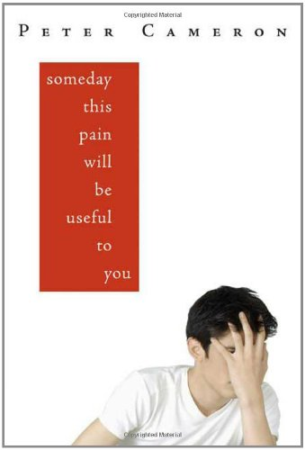 9780374309893: Someday This Pain Will Be Useful to You: A Novel