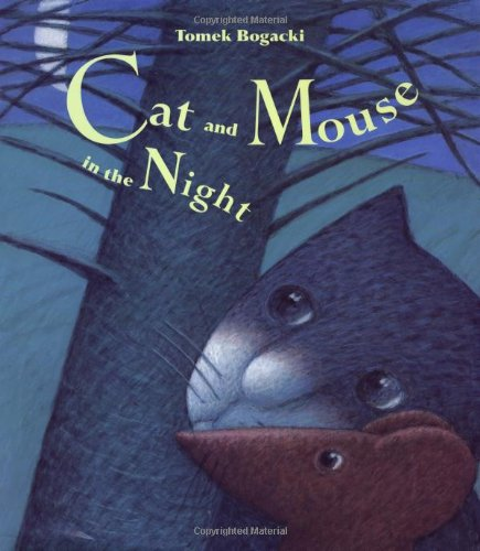 Cat and Mouse in the Night: Tomasz Bogacki
